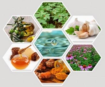 آنتی بیوتیک های طبیعی