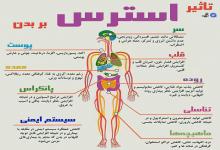 اینفوگرافیک / تاثیر استرس بر بدن