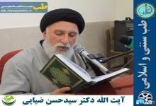 دکتر سید حسن ضیایی