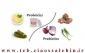 غذای پروبیوتیک چیست؟